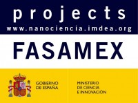 FASAMEX Friction at the Nanoscale: anisotropy effects and influence of mechanical excitations