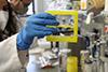 [Agencia SINC] Colorimetric test with gold nanoparticles to detect coronavirus